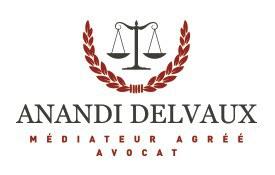 Logo Anandi Delvaux